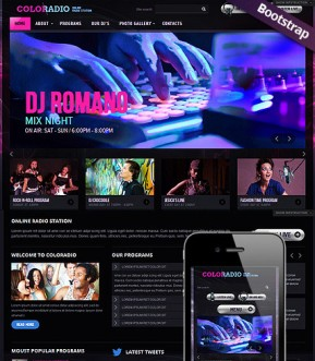 ColoRadio Bootstrap template ID: 300111589