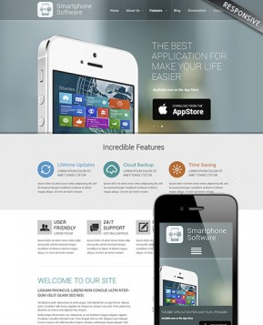 Application developer Wordpress template ID: 300111790