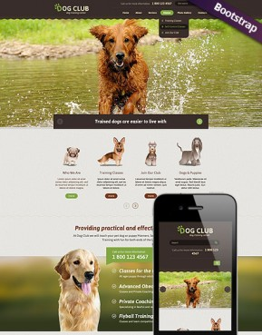 Dog Club Bootstrap template ID: 300111761
